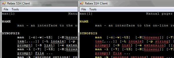 Terminal emulation - Rebex NET